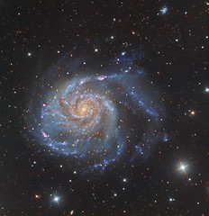 M101 - The Pinwheel Galaxy (Paddy Gilliland @ Image The Universe) Tags: m101 galaxy galaxies ic space nebula nebulae stars night astro astronomy astrophoto astrophotography ap narrowband hubble cosmos texture abstract outdoor wide widefield nighttime sky dark colours ngc astrometrydotnet:id=nova2714798 astrometrydotnet:status=solved