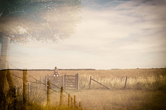 Summer Walks (jameslf) Tags: berkshire castle countryside oxfordshire ridgeway summer uffington whitehorse