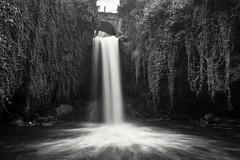 Tobera (thoskar) Tags: burgos spain waterfall cascada falls water naturaleza d3300 landscape longexposure tobera blancoynegro black white