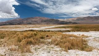 Pastures at Cazadero Grande