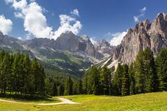 Ciampedie: un classico. (cesco.pb) Tags: valdifassa catinaccio ciampedie gardeccia dolomiten dolomiti dolomites alps alpi trentino italia italy montagna mountains