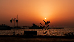 IMG_4725 (radomirmor) Tags: sunset sky 6d water sea boat tree sun egypt mbpictures