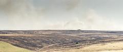 The Burnt and Burning Black Heath (stevedewey2000) Tags: landscape salisburyplain wiltshire blackheath blackened black burning burnedout burned burnt smoke landscapes 2351 widescreen tamron150600 explore explored