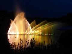 Abkühlung- cooling (Anke knipst) Tags: plantenunblomen hamburg germany stadtpark wasserlichtkonzert water light night nacht licht