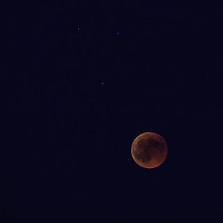 Lunar Eclipse at Blue Hour