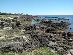 LA COTE SAUVAGE (marsupilami92) Tags: frankreich france paysdelaloire loireatlantique 44 lecroisic rocher atlantique