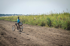 USAID_ERC_RLBI_Mozambique_2017-325.jpg (USAID/Land) Tags: john 2017 road evaluationresearchandcommunicationerc responsiblelandbasedinvestment genderequalityandwomensempowerment illovosugar mozambique bicycle johndwyer responsiblelandbasedinvestmentpilot dwyer boy field