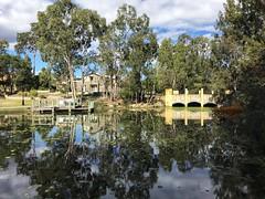 Reflections - Forest Lake, Brisbane, Qld (Explore #60) (Aussie~mobs) Tags: forestlake reflections brisbane queensland australia aussiemobs