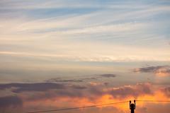 Alvorada (Felipe F Barros) Tags: alvorada nascerdosol sol luzesombra itapevi sãopaulo brasil fotografia euamoitapevi jardimsantarita canon canont5 canon100mm 100mm canonbr canonbrasil canonsãopaulo canonitapevi