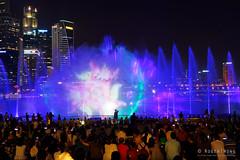 20180720-075-Marina Bay Sands light show (Roger T Wong) Tags: 2018 asia marinabaysands rogertwong sel2470z singapore sony2470 sonya7iii sonyalpha7iii sonyfe2470mmf4zaosscarlzeissvariotessart sonyilce7m3 fountain laser lights night projection show travel