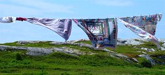 Blowing Quilts (dacardoso) Tags: sky green grass rock newfoundland quilt wind blow laundry clothesline quilts