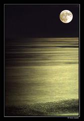 Hechizo de luna (Chema Concellon) Tags: espaa lafotodelasemana mar andaluca spain quality luna mediterrneo mlaga torredelmar 50v5fav 100vistas chemaconcelln newphotographers a