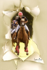 Rip it up! (Isabelle Ann) Tags: horse art sports wow caballo cheval bravo vermont photographer fantasy isabelle 300views warren cavallo cavalo polo pferd equine equus paard loh artisticphotography polomatch mostbeautiful views300 equineart sugarbushpoloclub isabelleann poloteam isabelleanngreen polophotography sporthorse equestrianart poloart equinephotographer artistichorse isabellegreen vermontpolo isabellegreenphotography isabelleannphotography isabelleannhorses equineartist artisticpolo
