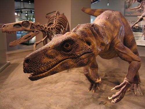 Herrerasaurus by brianbrarian.