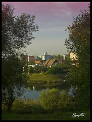 Szczecin (flyingMan) Tags: morning pink trees sky lake relax early pond peace clear szczecin