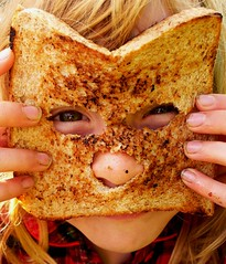 Rare Toastie-Niamh cat (jolou) Tags: cat toast brecon eats niamh