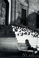 (s_issever) Tags: bw woman sunlight birds tag3 taggedout stairs tag2 tag1 istanbul mosque