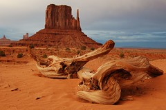 Monument Valley 2 (MadGrin) Tags: park usa america skull utah nationalpark monumentvalley woodenskull