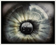 TheWatcher (myrte voogt) Tags: iris selfportrait black macro tree eye window collage closeup photoshop vintage dark lens landscape lost death skull see shiny mood escape shine branches imagemanipulation pupil dreamscape contactlens artlibre