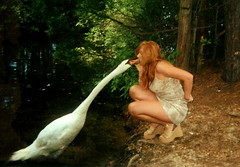 Pucker up! (GooseGoddessS) Tags: lake bird strange birds fairytale birdie swan kiss riviera unique oneofakind goddess feather fluff eccentric unusual waterfowl mythology mute myth puckerup leda ledaandtheswan helluva interestingness3 featheryfriday instantfave i500 featheryfriday1 specanimal animalkingdomelite abigfave goosegoddesss impressedbeauty irresistiblebeauty ibybvd078 superbmasterpiece beyondexcellence goldenphotographer flickrchallengegroup ibybvd078f diamondclassphotographer flickrdiamond flickrchallengewinner goosegoddess swankiss ancientmyths paulinabos storybookwinner storybookttwwinner