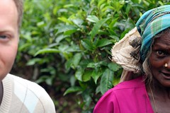 IMG_4654 (jeevs) Tags: blur lawrence tea srilanka jpgmag lws teapicking jpgmagtourist