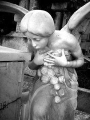 Pray (Al Santos) Tags: brazil sculpture grave brasil angel prayer pray praying escultura tumba consolao cemitrio paulo reza so anjo tmulo orao rezando orando prece thechallengefactory
