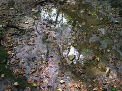 bachreflektion (ksepana) Tags: water wasser schwbischealb