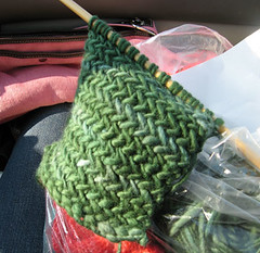 Scarf knitting on the road (LollyKnit) Tags: scarf malabrigo