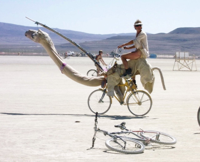 Camel Bike, Photo by David M