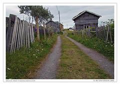 Where Does The Road Lead? (Bozze) Tags: norway hamningberg finnmark varangerpeninsula norgenorway varangerhalvön wwwoppnahorisonterse