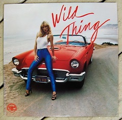Wild Thing/ Various (bradleyloos) Tags: music car 60s album vinyl cheesecake babe retro albums fotos lp lakeshore record albumcover wax 1980 albumart vinyls compilation recordalbums albumcovers wildthing garagerock recordcover rekkids vintagevinyl recordcollection vinylrecord musiccollection vinylrecords albumcoverart vinyljunkie fordthunderbird vintagerecords recordroom recordlabels myrecordcollection recordcollections vintagemusic lprecords collectingvinylrecords lpcoverart bradleyloos bradloos recordcollecting oldrecordalbums collectingrecords ilionny albumcoverscans vinylcollecting therecordroom greatalbumcovers collectingvinyl recordalbumart recordalbumcollectors analoguemusic 333playsmusic collectingvinyllps collectionsetc albumreleasedate coverartgallery lpcoverdesign recordalbumsleeves vinylcollector vinylcollections musicvinylscovers musicalbumartwork vinyldiscscovers raremusicvinylalbums vinylcollectinghobby galleryofrecordalbumcoverart