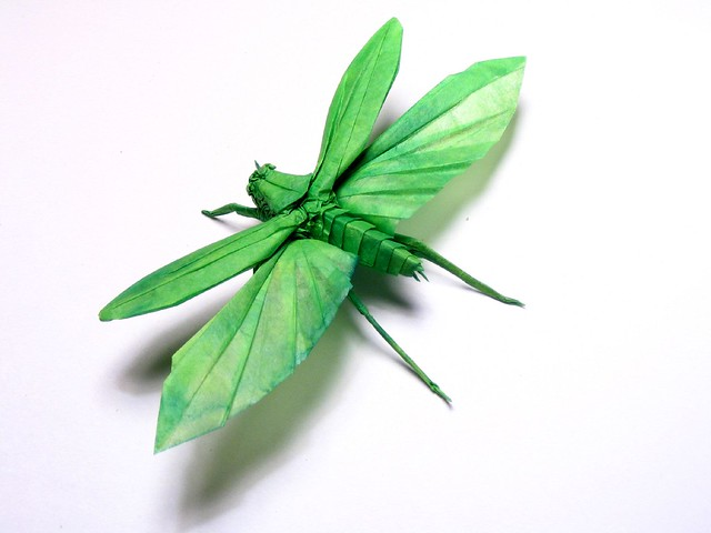 Flying katydid origami