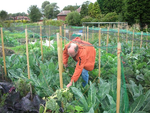 Vegetable Gardening is good exercise