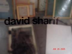 DSC00526.jpg (david.diliberto) Tags: david sharif