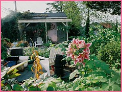 sitka lily and cottage (seewhy) Tags: house alaska garden coast lily pacific cottage inside sitka southeast passage