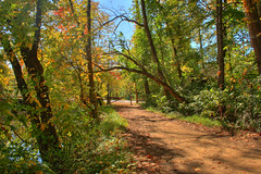 Princeton Canal in the Fall (jason_minahan) Tags: autumn fall nj princeton hdr mercercounty xti
