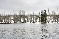 IMG_3274 (Bryan Hsieh) Tags: travel usa mountain lake snow landscape nationalpark 2006 idaho yellowstone wyoming geyser   grandteton       eos5d
