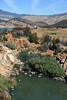 emigrant_lake (pixability) Tags: lake heron nature oregon landscape scenery ashland emigrant ©allrightsreserved pixability utatathursdaywalk28 bgoldman