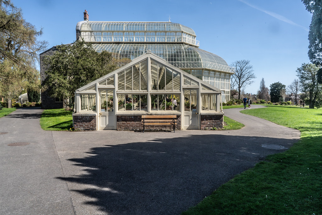VISIT TO THE NATIONAL BOTANICAL GARDENS [GLASNEVIN DUBLIN]-138535