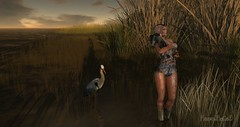 wet wednesday (Fawn Fatal) Tags: pond puppy jian erratic fatal female lake coast wildlife muddy sunset
