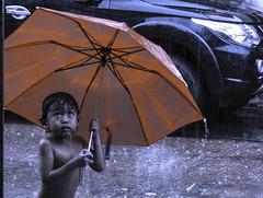Let it rain (stormymayen) Tags: boy rain umbrella car orange raindrops road lookup stare holdon