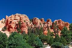 Red Rock Canyon-2 (johnaalex) Tags: d850 usa america utah nikkorafs2470f28ged