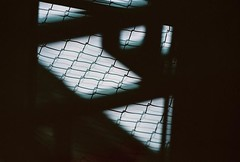no title (biancarosa.looman) Tags: kodakultramax400iso canon analog handheld reflection abstract fence arnhem
