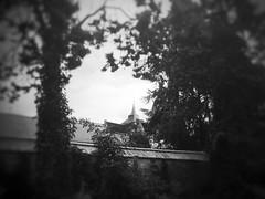 Le clocher (LUMEN SCRIPT) Tags: blur softfocus unsharp urbannature visualpoetry monochrome clocher spike