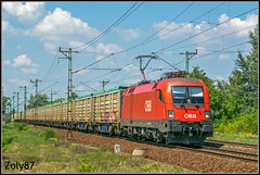 1116 014 (Zoly060-DA) Tags: hungary cegled country city obb taurus freight train class 1116 014 bo 6400 kw siemens blue green red white brown sky grass lines rails rail carriges trees