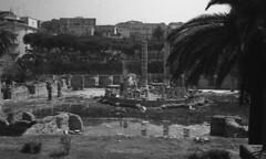 tempio-di-serapide (enzo.abramo) Tags: tempio serapide macellum pozzuoli napoli italia bradisismo terremoto sisma vulcano sismico vulcanico archeologico campi flegrei mercato romano colonne marmo
