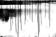 Abstraction 2018 (misaato) Tags: albnegru art architecture award alès eau best river rivière reflets grey topographics tumblr hydraulique paysage lumière nuit ombres noiretblanc monochrome world contraste contrast photo photographie photography pinterest photographer shadows shot flickr flickrose flickriver france fineart gris gardon gard hiveminer whiteandblack white nikon nikonflickraward dark lignes linescurves light lines languedoc landscape line misaatophotography misaato misaatocom water bw new blackandwhite blackartwhite blancetnoir bn bandw blanc blanconegra brillant nb nationalgéographic noir night