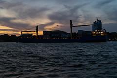 Frachtschiff Hooge auf der Elbe am Rüschpark (jose.rperez67) Tags: hamburg d ship elbe transport schiff nordee north sea