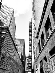 Downtown Alley (MassiveKontent) Tags: streetphotography montreal bw contrast city monochrome urban blackandwhite street photo montréal quebec photography bwphotography streetshot architecture asphalt concrete shadows noiretblanc blancoynegro buildings alley metropolis cityscape