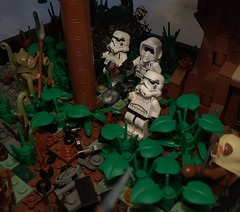 Night on Endor 1